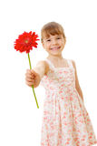 Smiling little girl with red flower. Smiling little girl wearing summer dress standing and holding red flower Stock Photos