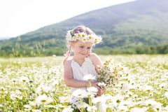 Smiling little girl with wreath of chamomiles Royalty Free Stock Images