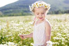 Smiling little girl with wreath of chamomiles Royalty Free Stock Photography