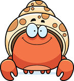 Smiling Little Hermit Crab Royalty Free Stock Photo