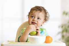 Smiling little kid child baby boy sitting in highchair and eating big green apple fruit portrait indoors. Smiling little kid child baby boy toddler sitting in stock images