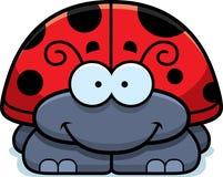 Smiling Little Ladybug Stock Photos