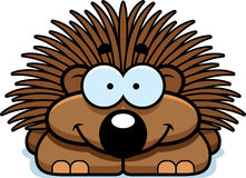 Smiling Little Porcupine. A cartoon illustration of a little porcupine happy and smiling Royalty Free Stock Photo