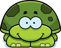 Smiling Little Turtle Stock Images
