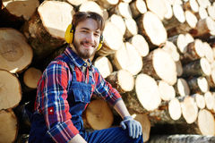Smiling Lumberjack with Pile of Tree Trunks Royalty Free Stock Images