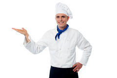 Smiling male chef showing something Stock Images