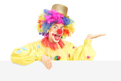 Smiling male clown standing behind blank panel gesturing with ha. Nd isolated on white background Royalty Free Stock Images