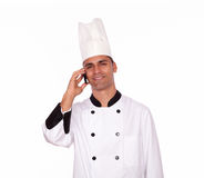 Smiling male cook conversing on cellphone Royalty Free Stock Image