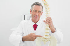 Smiling male doctor explaining spine in office Stock Photo