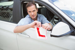 Smiling male driver tearing up his L sign Royalty Free Stock Photography