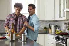 Smiling male gay couple preparing a meal at home look down Stock Image