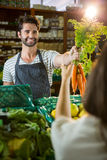 Smiling male staff assisting a woman with grocery shopping Stock Images