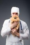 Smiling male vet with phonendoscope holding cute pomeranian dog Stock Image