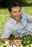 Smiling man amongst the daisies Stock Images