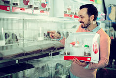 Smiling man choosing pretty bird. Young cheerful man choosing pretty bird for keeping in pet shop Stock Images
