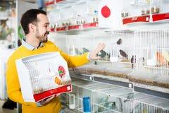 Smiling man choosing pretty bird. Young handsome man choosing pretty bird for keeping in pet shop Stock Image