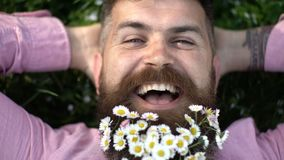 Smiling man enjoying warm sunny day on green meadow, spring freshness concept. Happy hipster with tiny white flowers in stock video footage