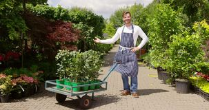 Smiling man with flowerpots on cart. Cheerful man wearing apron and standing with cart full of green plants in flowerpots working in green summer garden stock video