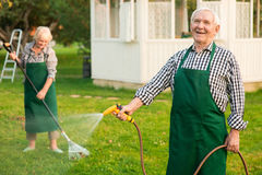 Smiling man with garden hose. Smiling men with garden hose. Elderly male in apron outdoors. Turn hobby into job royalty free stock photo