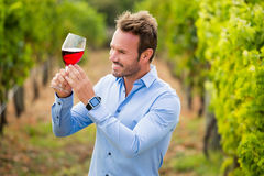 Smiling man holding wineglass. Smiling young man holding wineglass at vineyard Stock Photography