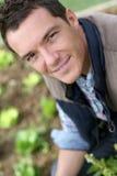 Smiling man kneeling lettuces in garden Royalty Free Stock Images