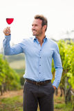 Smiling man looking at wineglass. Smiling young man holding wineglass while standing at vineyard Stock Photography
