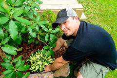 Smiling Man Planting and landscaping. A Man smiling in a plain black shirt and hat Planting and landscaping stock photography