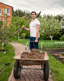 Smiling man with spade and garden wheelbarrow Stock Image