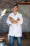 Smiling man veterinarian in white coat with chickens. Smiling man veterinarian in white coat holding brown chickens in hands on farm Royalty Free Stock Photography