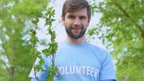 Smiling man volunteer holding tree sapling deforestation problem solving, nature