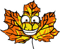 Smiling Maple Leaf Royalty Free Stock Photo