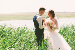 Smiling married couple in high grass Stock Images