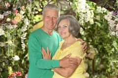 Smiling mature couple Stock Photo