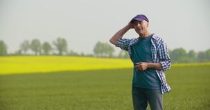 Smiling mature farmer examining agricultural field stock footage