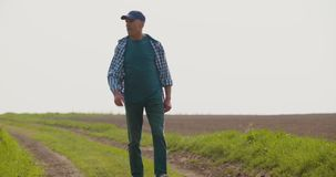 Smiling mature farmer walking on agricultural field stock footage