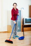 Smiling mature housewife cleaning  in living room Stock Image