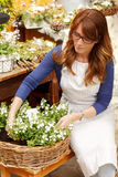 Smiling Mature Woman Florist Small Business Flower Shop Owner. Shallow Focus stock photography