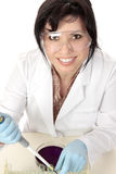 Smiling medical researcher royalty free stock photo