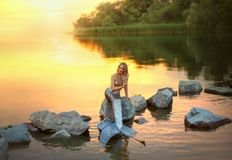 Free Smiling Mermaid On The Stone Stock Photography - 123757822