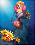 A smiling mermaid sitting above the rocks Stock Photos