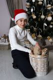 Smiling mischievous boy is taking out the brown teddy bear from. Close up of smiling mischievous boy in white sweater and Santa red hat. Boy is sitting near Stock Images