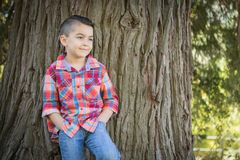 Smiling Mixed Race Young Boy Standing Outdoors. Cute, Happy Mixed Race Young Boy Standing Against a Tree Outdoors royalty free stock photography
