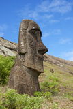 Smiling Moai on Easter Island. Half buried Moai at the Moai Workshop on Easter Island (Rapa Nui or Isla de Pascua). The workshop is located at Rano Raraku.  Rano Royalty Free Stock Image