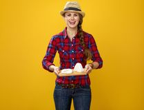 Smiling modern woman grower showing trey with soft white cheese. Healthy food to your table. Portrait of smiling modern woman grower in checkered shirt on yellow Royalty Free Stock Photo