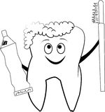 Smiling molar tooth sketch. Molar tooth smiling while holding brush and paste Stock Images