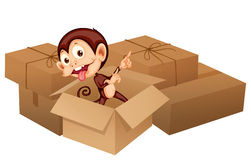 A smiling monkey and boxes Stock Image