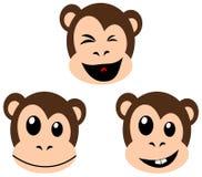 Smiling monkey faces  on white Royalty Free Stock Photo