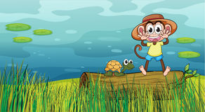 A smiling monkey and a tortoise Stock Image