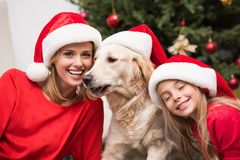 Mother, daughter and dog in Santa hats Royalty Free Stock Images