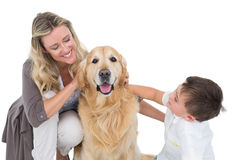Smiling mother and son petting their golden retriever Royalty Free Stock Photography